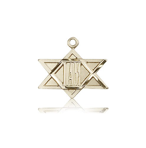 I Am Star Medal, 14 Karat Gold - 14 KT Yellow Gold